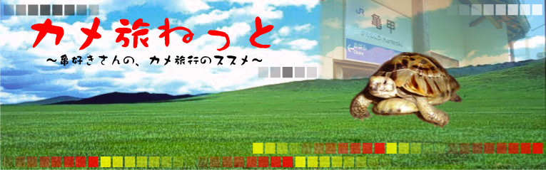 kametabinet-jiari.jpg